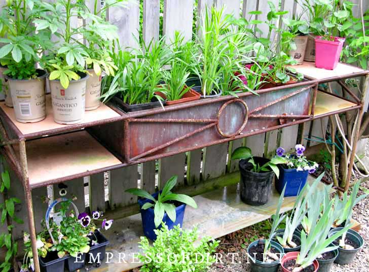 Old metal table used as a garden potting bench; lots of potted plants on top.