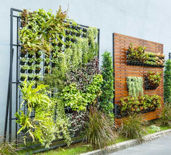 Two living walls with planters.