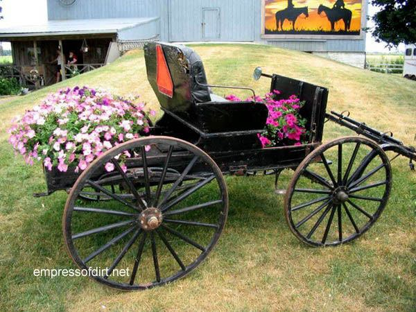Old Order Buggy with Flower Baskets