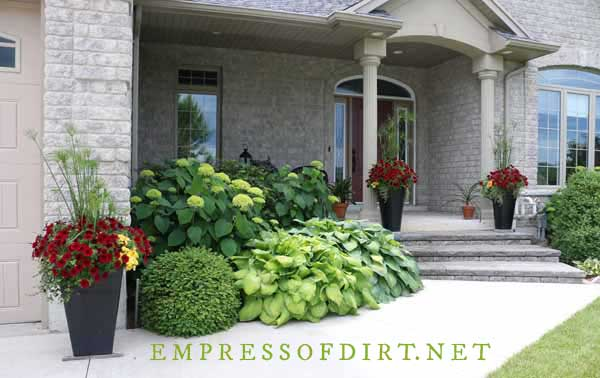 Front garden leading to door with tall planters, hydrangea and hostas.