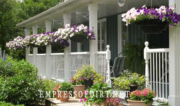 Front porch with hanging baskets of purple and white petunias.