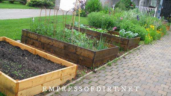 Row of garden boxes on urban front yard.