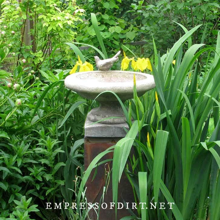 Concrete birdbath with bird ornament on pedestal.