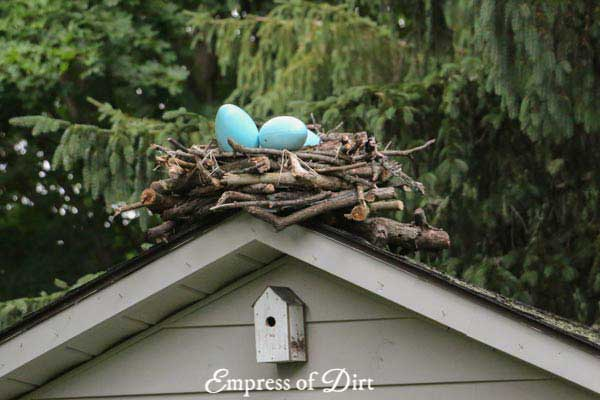Giant bird nest on top of garden shed.