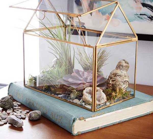 Garden terrarium with brass edging.