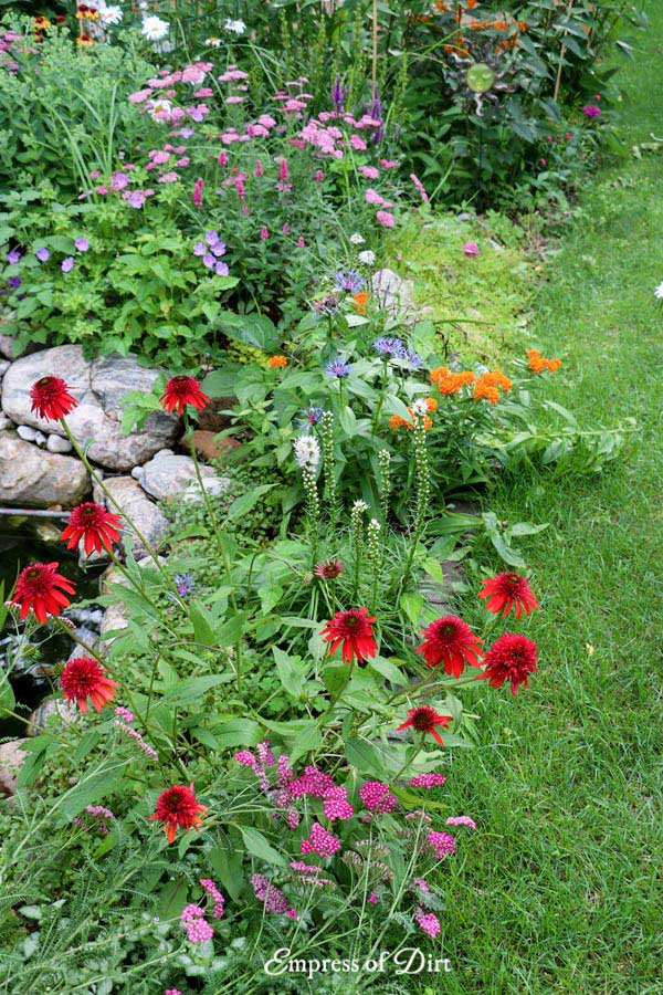 Colorful flowering perennials in summer garden.
