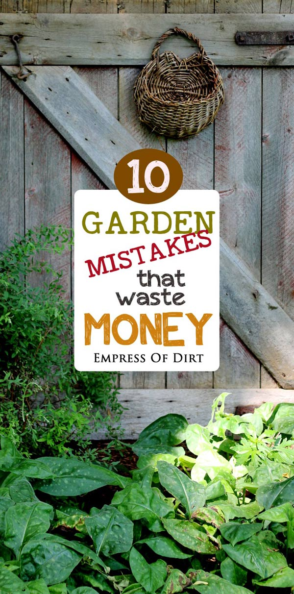 Garden mistakes that waste money and time.