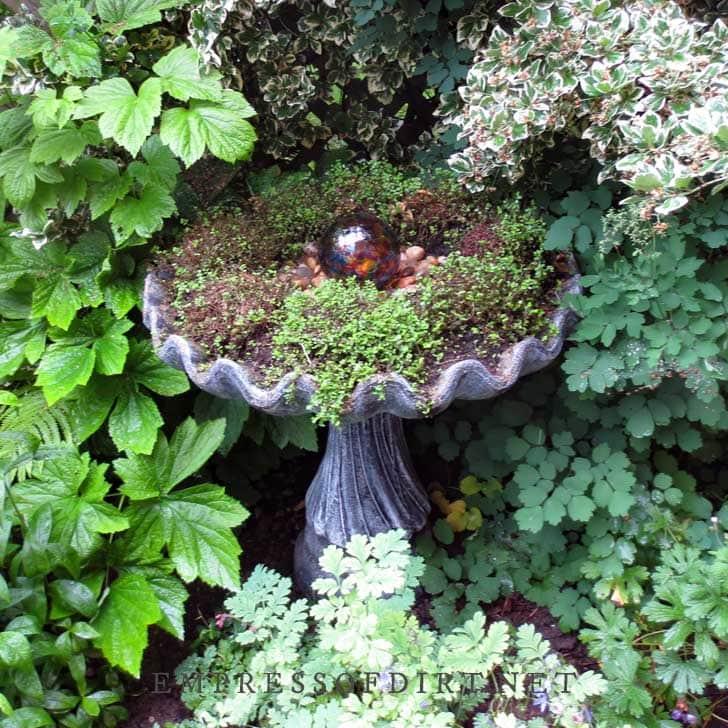 Birdbath planter with red gazing ball.