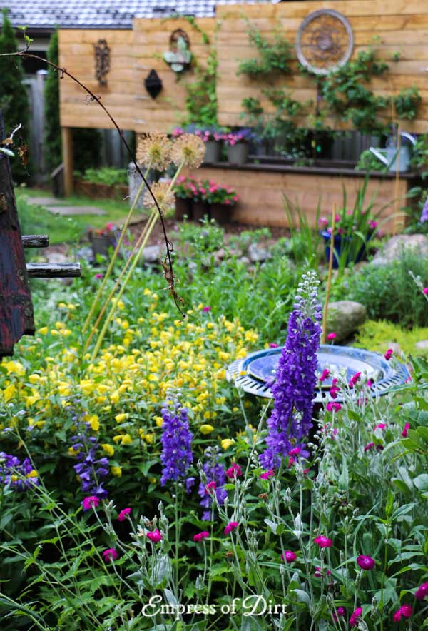 Purple delphiniums and yellow evening primrose in garden.
