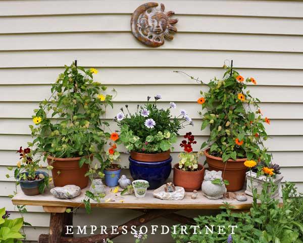 40 Unique Container Gardening Ideas, Outdoor Garden Pot Plants