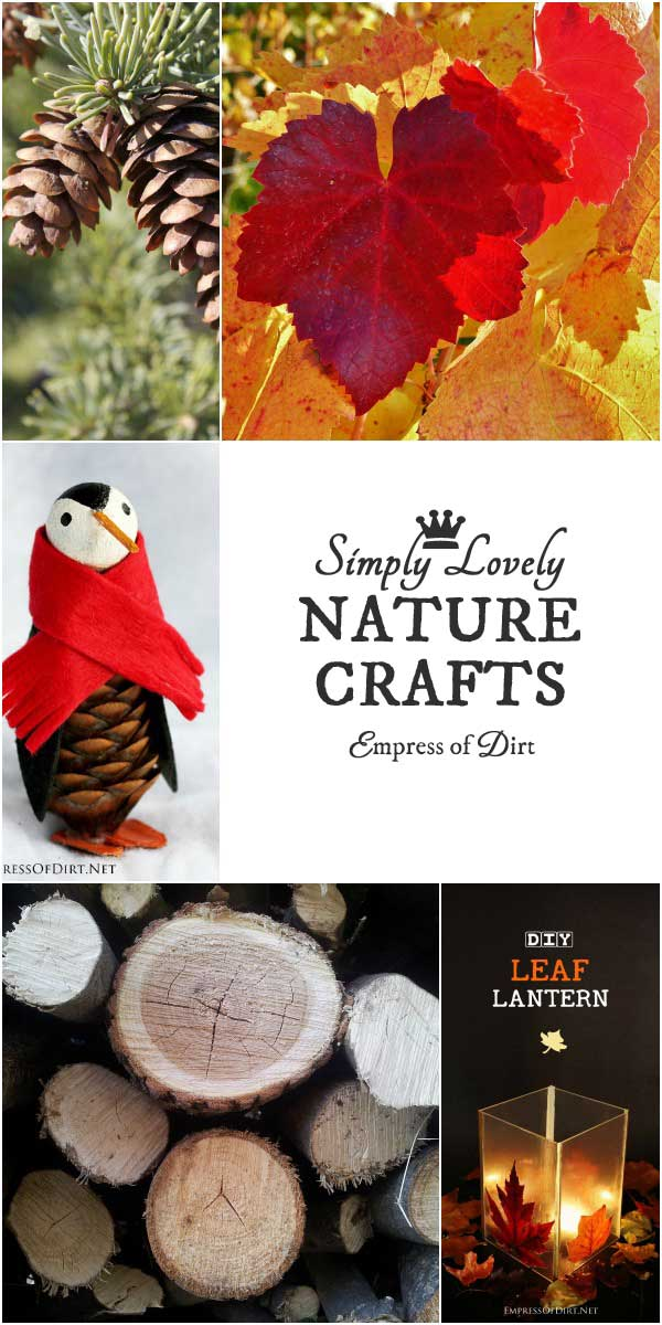 These autumn-inspired crafting projects use leaves, pinecones, and plants from the garden. They are simple, frugal, and a easy to make. Ideas include seasonal decor, ornaments, a lantern, and wreath.