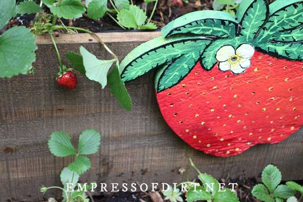 Hand-painted strawberry sign on wood planter box.