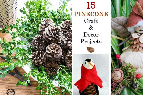 DIY Pinecone Crafts & Decor Ideas