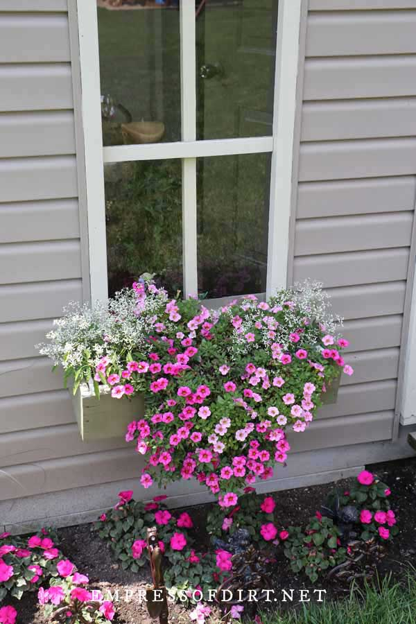 Windowbox filled with cascading pink and white flowers.