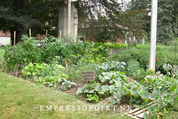 Community vegetable garden.
