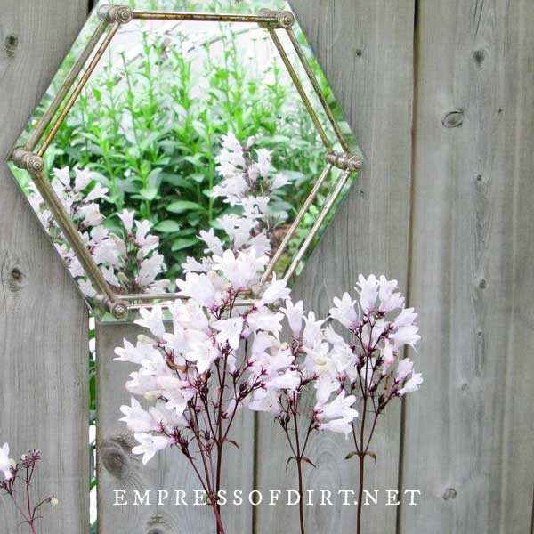 Six-sided mirrored tray in garden with flowers.