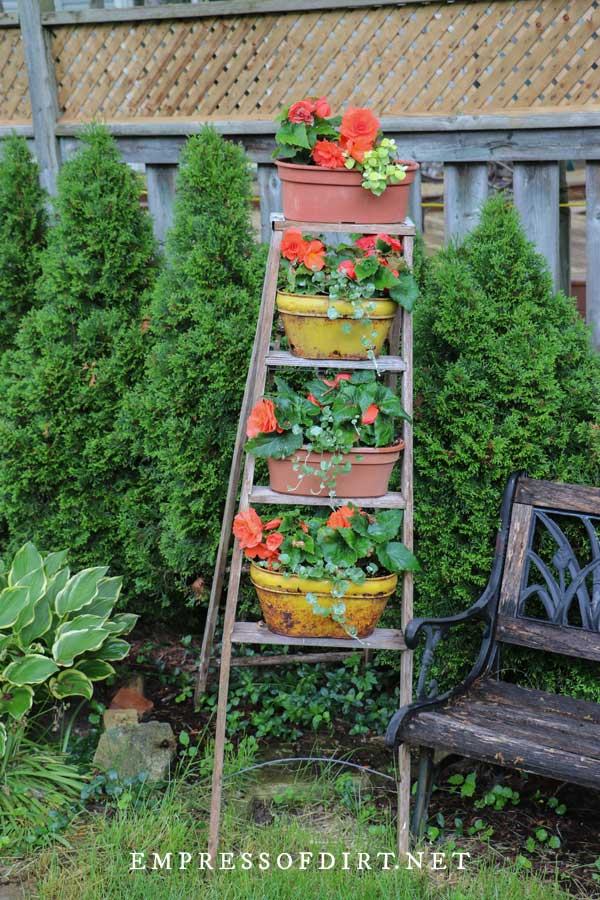 Garden Ladder Flower Stand