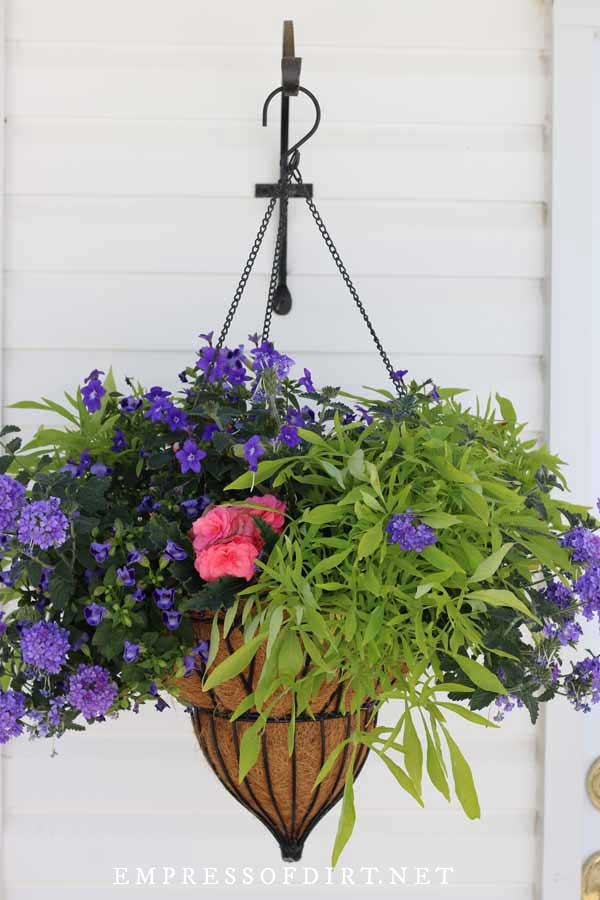 Hanging basket on side of garage featuring puriple and pink flowers and green foliage.