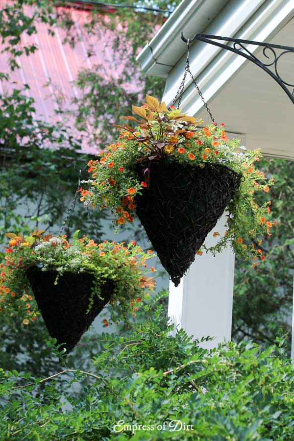 Hanging cone-shaped baskets filled with orange flowers on front porch of house.