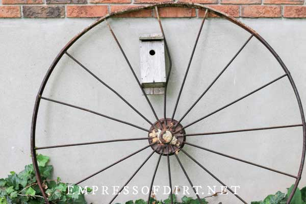Metal wagon wheel rim in garden.