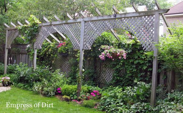How to add unique fences and screens to improve the privacy in your backyard garden.