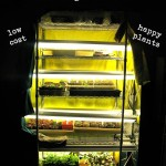 Fluorescent Grow Lights For Starting Seeds Indoors