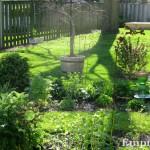 2012 May garden.