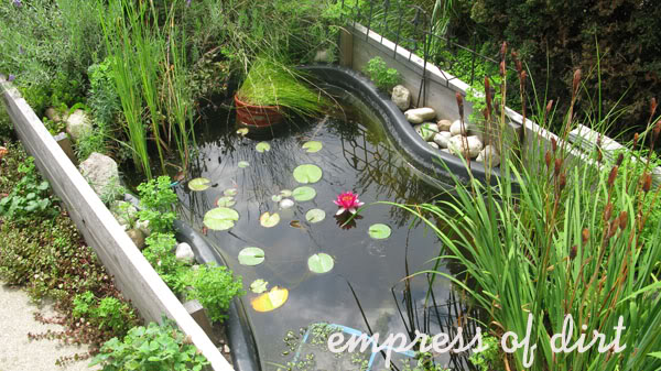Pond In Raised Bed With Lilies Empress Of Dirt