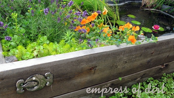 When you choose wood for a raised bed, make sure it is safe (contains no contaminents) that could affect the health of the soil or any plants you grow in it.