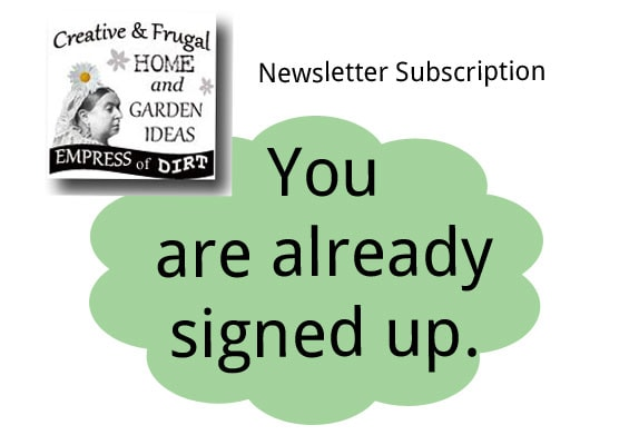You have already subscribed to the newsletter. Thank you!