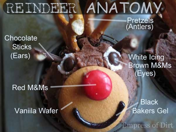 Diagram showing how to make reindeer cupcakes.