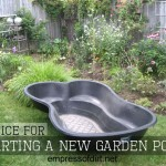Advice For Starting A New Garden Pond