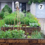 My Edible Front Garden. And How I Came Out As A Front Yard Veg Grower.
