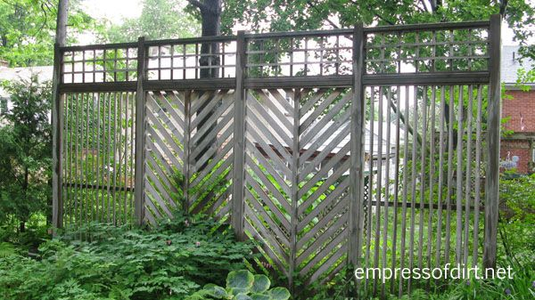 This style of screen doesn't offer much privacy but it's a good way to give a garden some definition and keep the focal points within the garden.