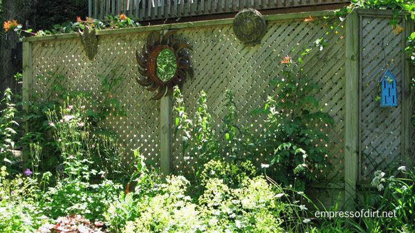 Garden Fence Amp Screen Privacy Ideas Empress Of Dirt