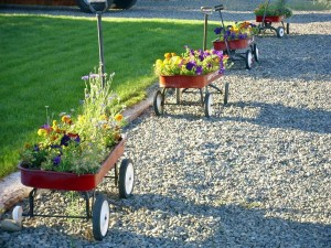 Planted toy wagons all in a row! See more fabulous garden container ideas