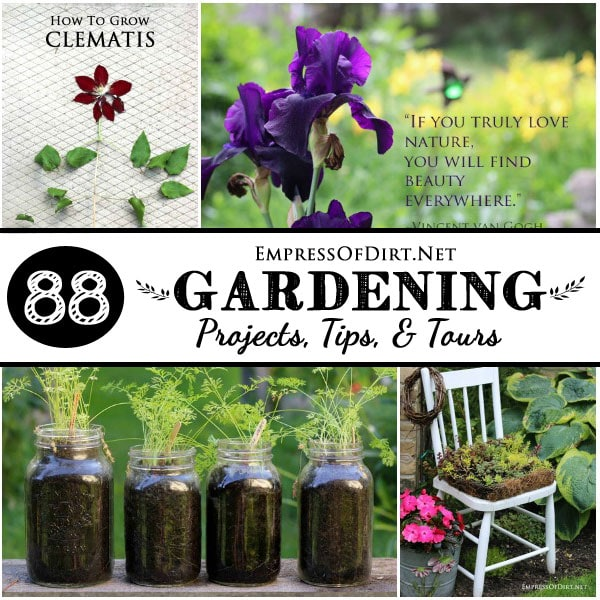 88 Gardening Tips, Projects, and Tours | empressofdirt.net