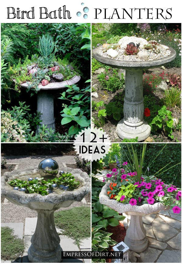 Turn a bird bath into a flower planter.