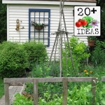 20+ Ideas for home veggie gardens