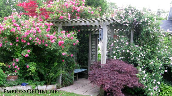 20+ Ways to create vertical interest in the garden with arbors, trellis, obelisks, and more. Arbor in rose garden with seating area.
