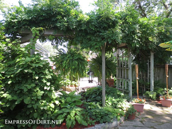 20+ Ways to create vertical interest in the garden with arbors, trellis, obelisks, and more. Vine climber!