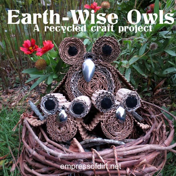 Earth-Wise Owls - a recycled craft project empressofdirt.net/earth-day-projects #earthdayprojects