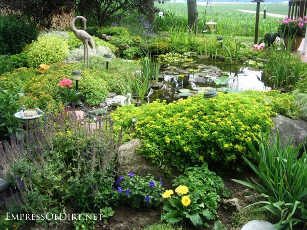 Beautiful backyard garden pond with heron statue.