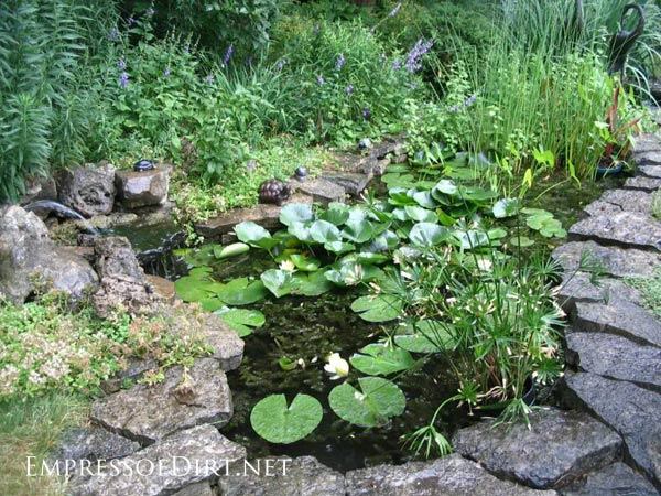 beautiful backyard pond ideas for all budgets medium size inground pond - Diy Garden Pond Ideas