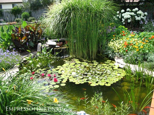 17 beautiful backyard pond ideas for all budgets for Backyard pond designs