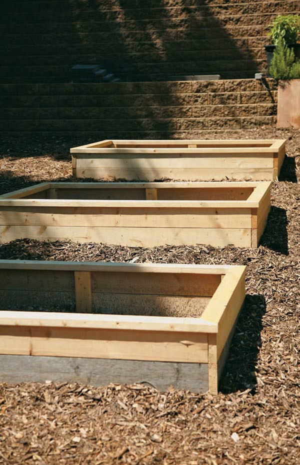 Raised beds - The Edible Landscape by Emily Tepe - photo by Paul Markert