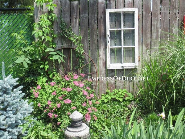 Plain window on fence - gallery of ideas for your garden