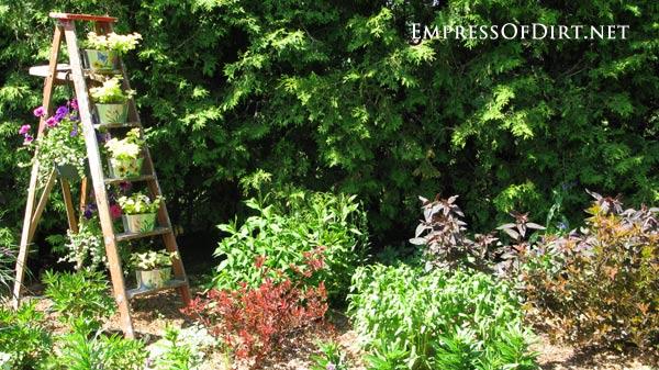 Ladder flower pot stand