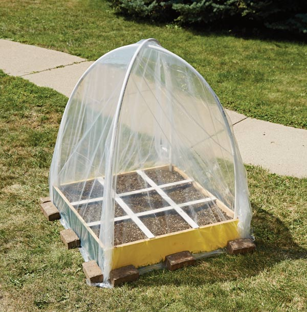 Mini dome greenhouse for home garden.