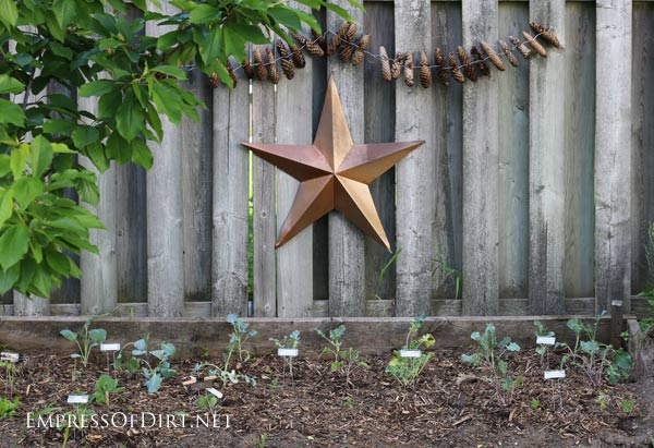 Copper star over veggie garden